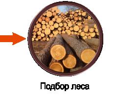 Подбор леса
